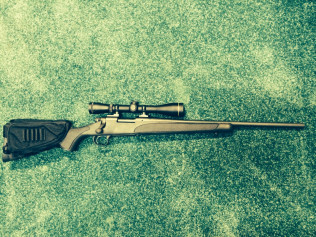 Remington Model 700 Youth in .243